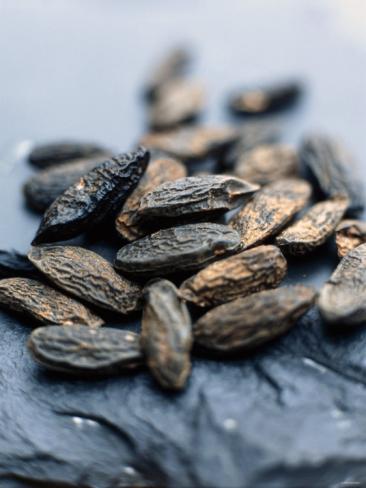 stefan-braun-tonka-beans-african-spice-_i-G-26-2634-FMCMD00Z